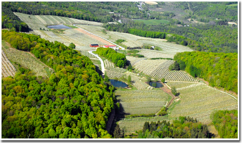 The History of Southern Vermont Orchards